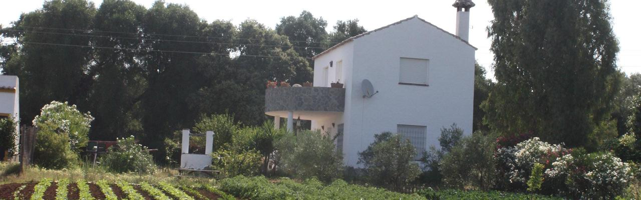 Our secluded country house with beautiful surroundings in the valley near Vejer de la Frontera